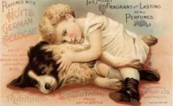 A small child hugs a black and white dog on the floor