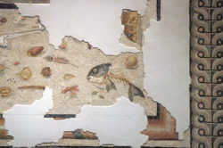 Fragments of an unswept floor mosaic with a fish skeleton, 1st C AD