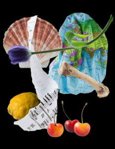 Different objects on a black background - a bone, tulip, music score, cherries & lemon