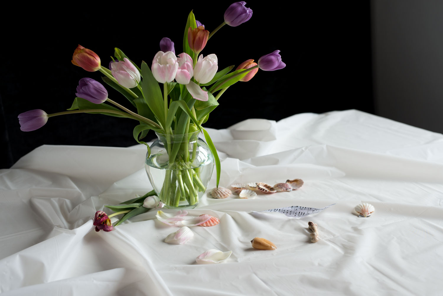 A vase of dying tulips on a white table cloth with shells and a bone in front